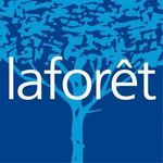 LAFORET Immobilier - EXPO SUD SARL